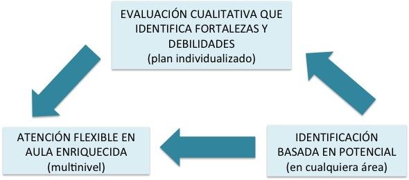 modelo-cualitativo-identificacion-evaluacion-respuesta